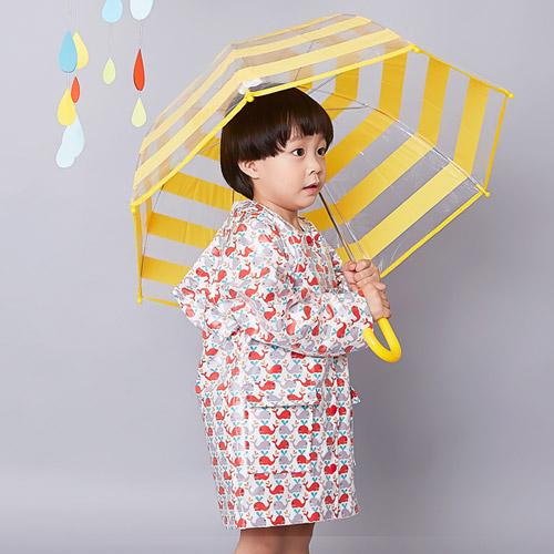 Raincoat - Dolphin Pop, L size